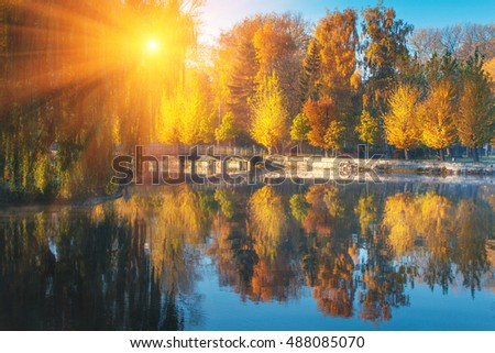 Stock Photo Beautiful autumn scene. Colorful foliage in the park at sunshine. Reflection of trees in water. Filtered image: Soft and colorful effects.