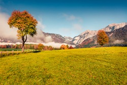 Beautiful autumn scenery. Misty morning view of Saalfelden am Steinernen Meer town. Sunny autumn scene of mountain pasture. Stunning landscape of Alps, Austria, Europe.