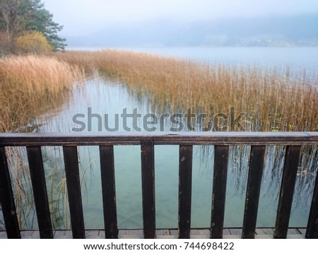 Beautiful autumn view with lake