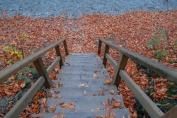 Beautiful autumn views of Yedigoller National Park. Reflection of trees. Wooden pier. Colored leaves. Falling leaves. Wooden stairs. Autumn,Winter. Photo taken on 10th November 2018 Yedigoller
