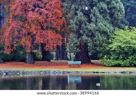 Beautiful autumnal look of beacon hill park in victoria, british columbia, canada
