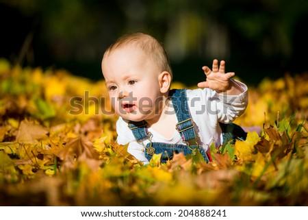 Beautiful baby crawling  in fallen leaves - fall scene