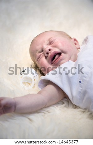 beautiful baby on sheep skin screaming