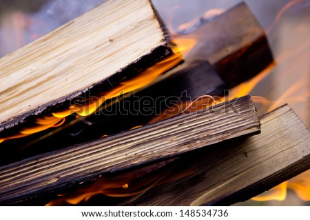 Beautiful background of burning logs outdoors