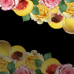 Beautiful background of peaches and roses. Isolated