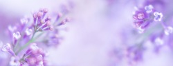 Beautiful background with lilac flowers. Close-up of lilac branches . Space for text