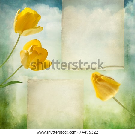 beautiful background with yellow tulips