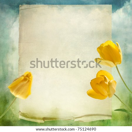 beautiful background with yellow tulips - stock photo