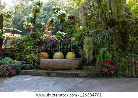 beautiful backyard garden park scene