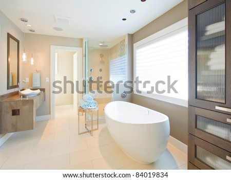 Beautiful Bathroom Interior in New Luxury Home