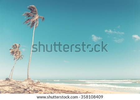 Beautiful beach and caribbean sea in Dominican Republic #358108409