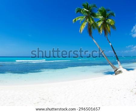 beautiful beach and tropical sea #296501657