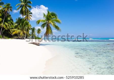 beautiful beach and tropical sea #525910285