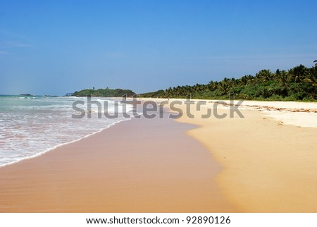 Beautiful beach and waves at coastline
