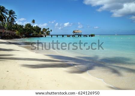 Beautiful beach at Tobago island in Caribbean Stock photo ©