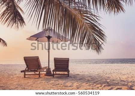 Beautiful beach background for summer travel with sunset, coconut palm tree and beach wooden bed on sand with beautiful twilight colors. Summer mood sun beach background concept. #560534119