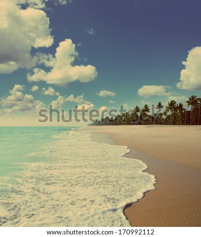 beautiful beach landscape with...