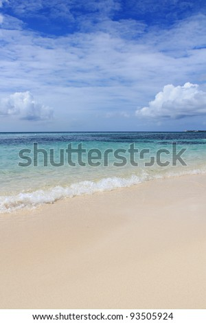 beautiful beach on the cayman islands