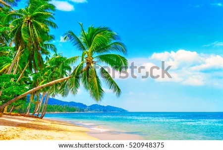 Beautiful beach. View of nice tropical beach with palms around. Holiday and vacation concept.  Tropical beach. #520948375