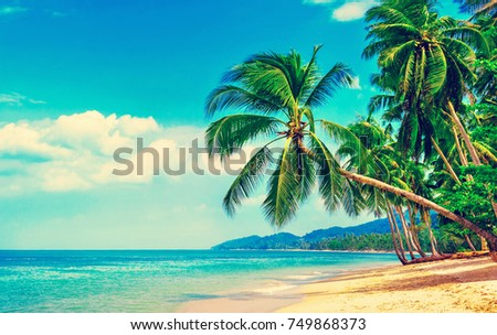 Beautiful beach. View of nice tropical beach with palms around. Holiday and vacation concept.  Tropical beach. #749868373