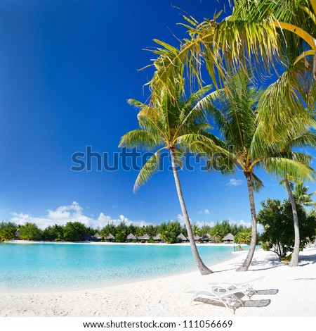 Beautiful beach with coconut palms on Bora Bora island in French Polynesia
