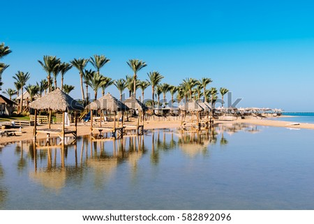 Beautiful  beach with palm trees at sunset, Sharm El Sheikh,  Red sea, Egypt #582892096