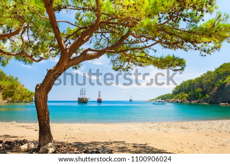 Beautiful beach with turquoise water and pines. 'Paradise bay' near Kemer, Turkey Stok fotoğraf ©