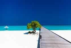 Beautiful beach with wodden jetty and single small tree in Maldives