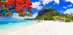 Beautiful beaches of sunny Mauritius island. Tropical vacations