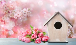 Beautiful bird house and spring flowers on wooden table outdoors