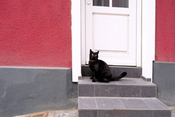 beautiful black cat sitting on the porch of a house in front of a closed door in the city, misfortune superstition concept, homeless animals