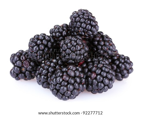 beautiful blackberries isolated on white