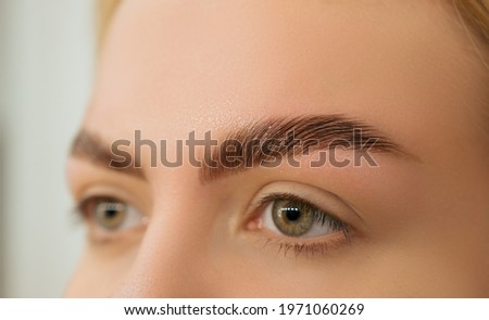 Beautiful blonde with laminated eyebrows. Close-up of laminated and stained eyebrows. Eyebrow Care Trend.  Laminating and Extension for Lashes. Beauty Model with Long Eyelashes and Brows. Stok fotoğraf ©