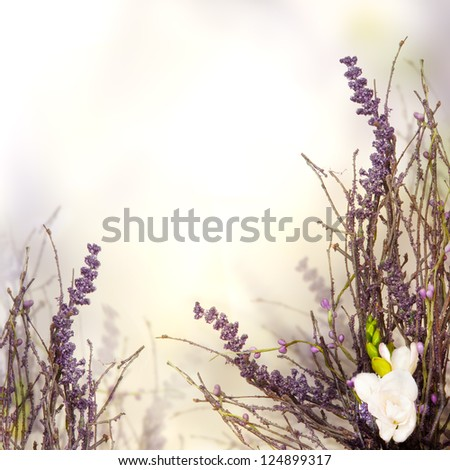 Beautiful blossom floral border, beautiful blurred background