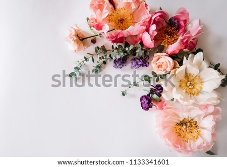 Beautiful blossoming coral peonies, matthiola,roses and eucalyptus making a frame on the white background, top view, flat lay