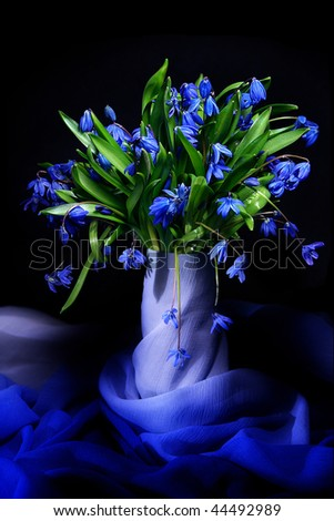 Beautiful blue natural fresh snowdrops still life