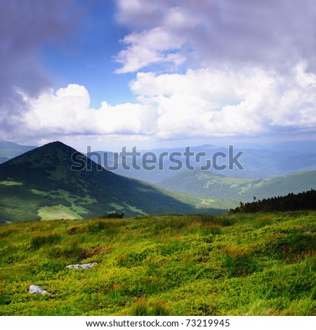 Beautiful blue sky and dry grass high up in Carpathian mountains, peak Goverla