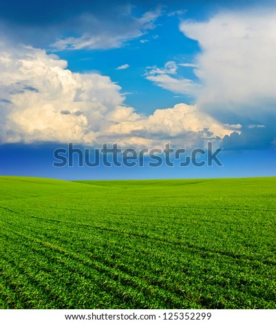 Beautiful blue sky and white clouds. Deep blue sky and clouds. Green Field. wonderland