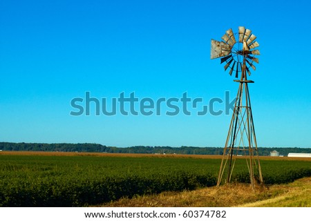 Beautiful blue sky bean field and a rusted old windmill