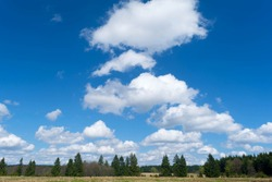 Beautiful blue sky with puffy white clouds over green tree crowns landscape. Nature,relaxing,trip and beauty.