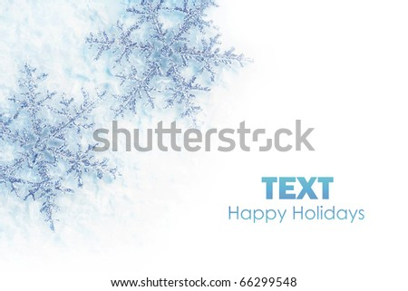 Beautiful blue snowflakes isolated, winter holiday background with copy space