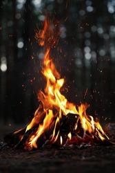 Beautiful bonfire with burning firewood in forest