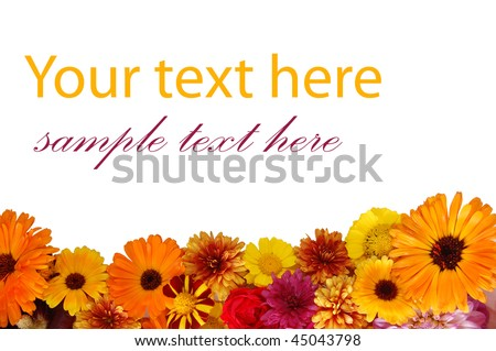 Beautiful border from fresh flowers on a white background
