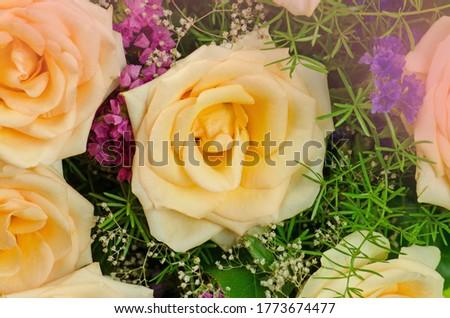 Beautiful bouquet flower arrangement. Colorful roses flower bouquet