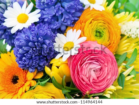 beautiful bouquet of assorted colorful flowers. ranunculus, hyacinth, daisy, gerber