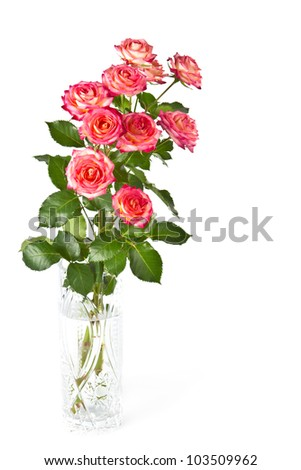 Beautiful bouquet of colored roses in a vase on a white background, isolated. - stock photo
