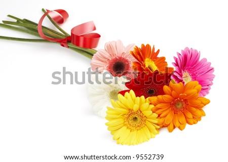 beautiful bouquet of colorful gerbera flowers, summer flowers