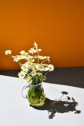 beautiful bouquet of daisies in glass vase on orange and grey background, deep shadows