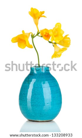 Beautiful bouquet of freesia in blue vase isolated on white