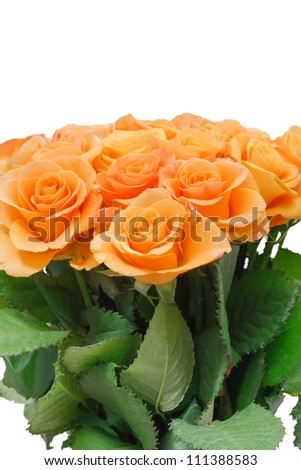Beautiful bouquet of orange roses. Isolated on white background, macro close-up photo #111388583